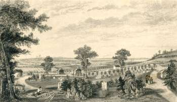 nunhead-cemetery-00585-350