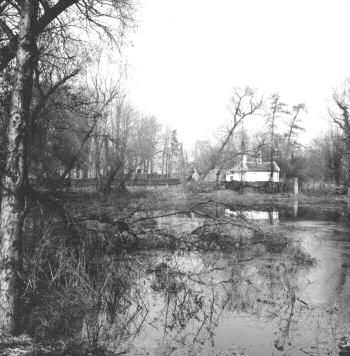 pond-road-01128-2-350
