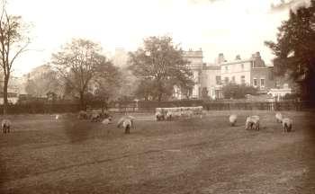 Brixton Oval, Brixton, 1892