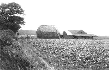 Bellingham Farm, Bellingham, c. 1920