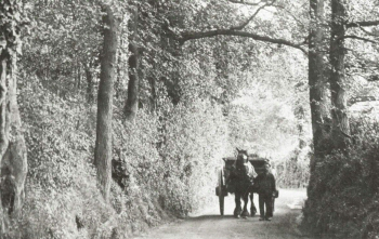 Rectory Lane, Foots Cray, c. 1910