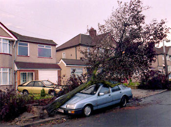 The Great Storm, Northumberland Avenue, Welling, 1987