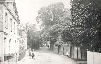 Halt Robin Road, Belvedere, 1910