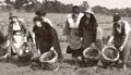 Pincott Fields, Bexleyheath, c. 1930