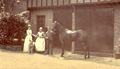Forest Lodge Stables, Fishpond Road, Keston, Bromley, 1894