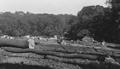 Martens Grove, Barnehurst, 1934